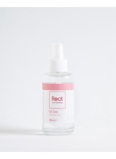 Root Aromaterapi Bitkisel Ürünler Renksiz